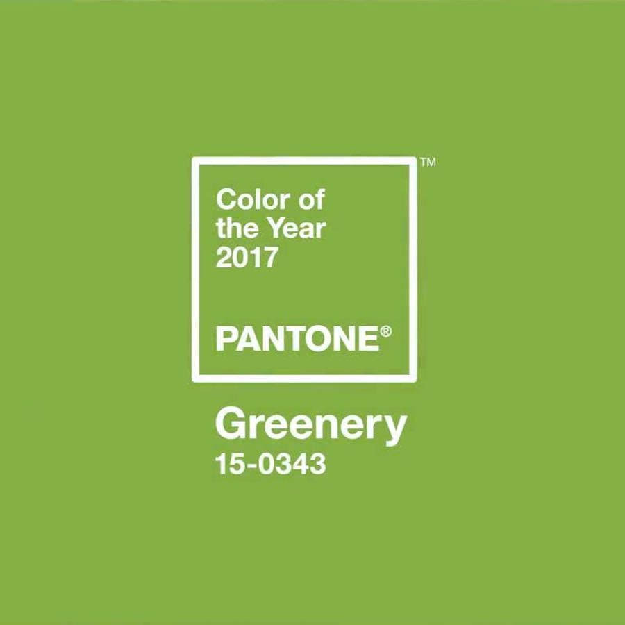Pantone's Color of the Year - Greenery - a trend for 2018 weddings